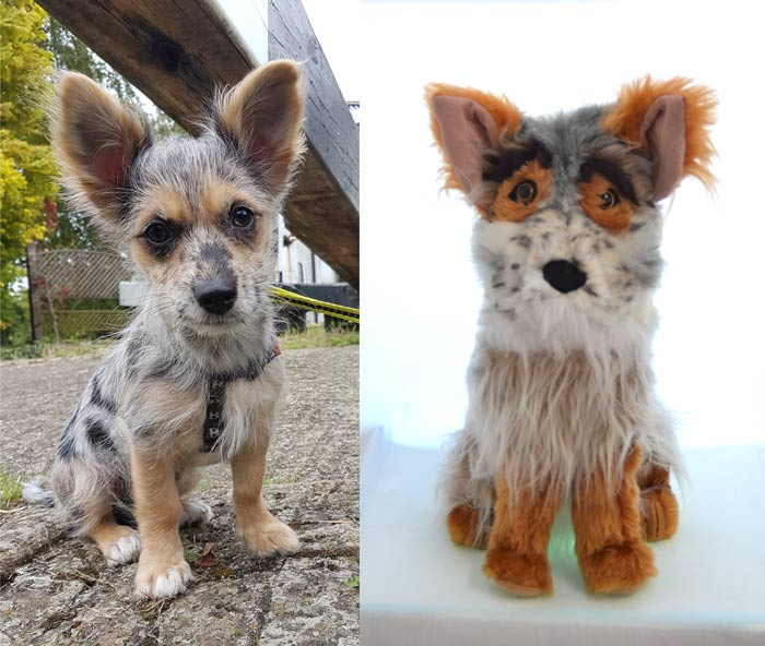 Photo of a dog alongside a custom pet soft toy made in its likeness