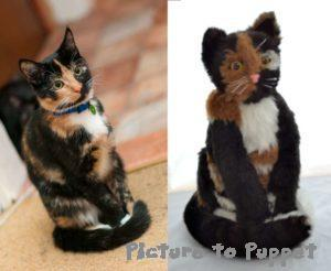 calico cat with custom likeness soft toy