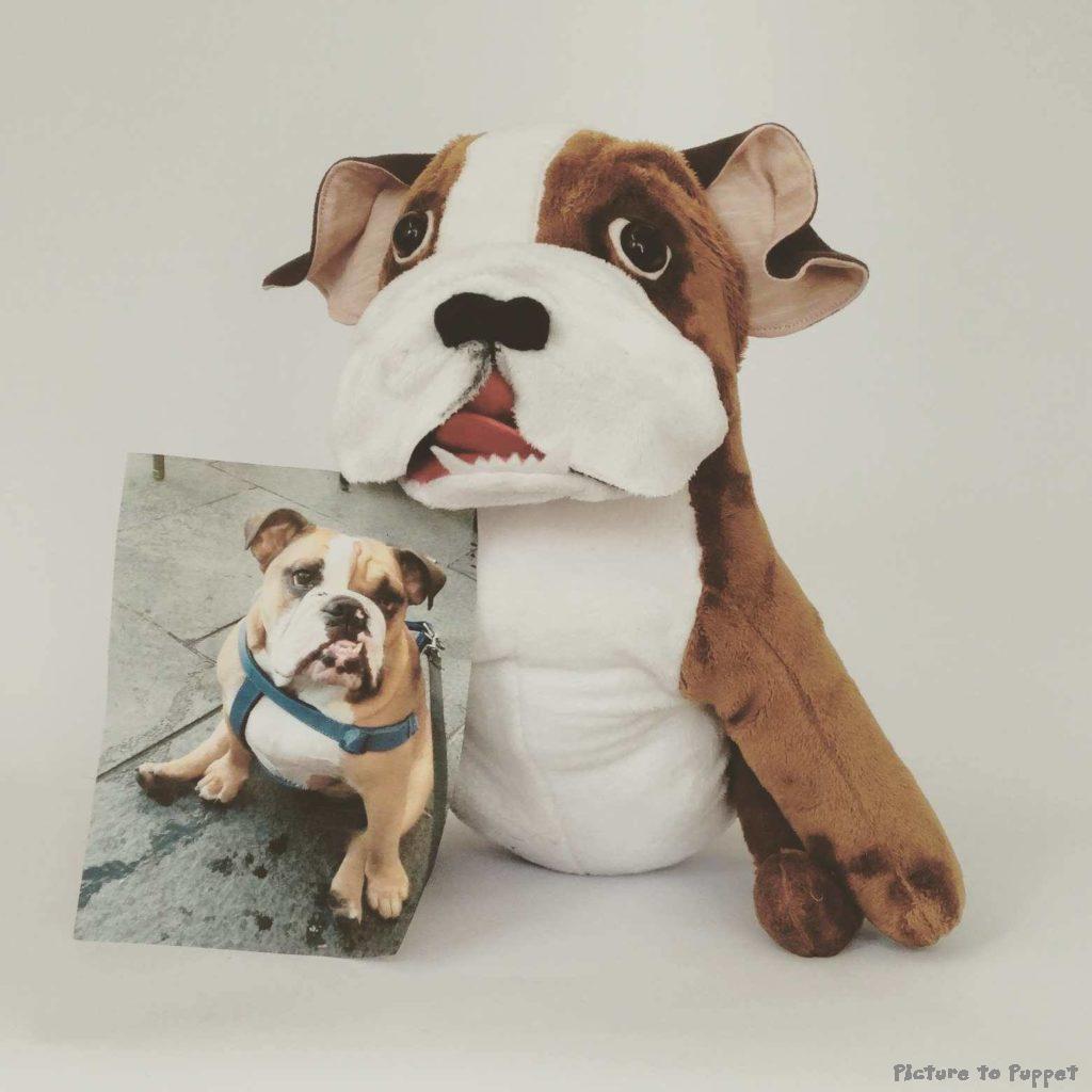 Custom Dog Soft Toy